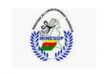 Cameroon Ministry Of Higher Education Minesup Un Spider Knowledge Portal