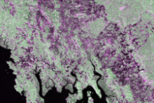 Forest Mapping and Monitoring with SAR Data. Image: NASA