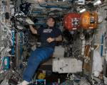 Astronaut Greg Chamitoff inside the US National Laboratory