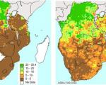 satellite images help to predict drought and crop yield