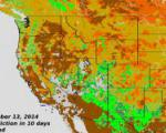 Foliage Phase Prediction Derived from VIIRS NDVI