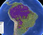 Forest cover in South America viewed on the Geo-Wiki platform (Image: IIASA/Geo-Wiki/Google Earth)
