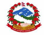 NDRRMA logo.