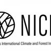 Official Logo of NICFI. Image: NICFI.