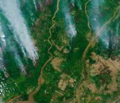 The Copernicus Sentinel-2 mission captured the fires over Borneo on 13 September 2019. Image: contains modified Copernicus Sentinel data (2019), processed by ESA, CC BY-SA 3.0 IGO.