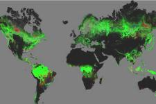 First map of forest change that is globally consistent and locally relevant
