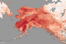 Temperature anomalies in Alaska in January 2014
