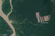 Deforestation in Peru detected by Landsat 8 in August 2013.