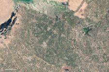 satellite image of Uzbekistan