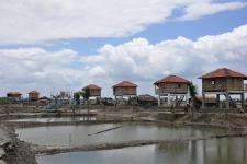 resilient village was built in Bangladesh after Cyclone hit the coast