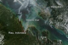 154  forest and land fires across Riau province on 20 July.
