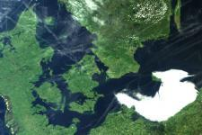 MERIS image of Denmark, on 1 June 2003.