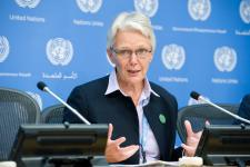 UNISDR head Wahlström urges world leaders to take action on disaster risk reduction
