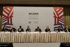 Panel of the WCDRR working session on early warning