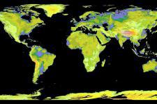 Global Digital Elevation Model produced by ASTER (Image: NASA)
