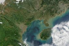 True color satellite image of the Gulf of Tonkin in Vietnam (Image: NASA)