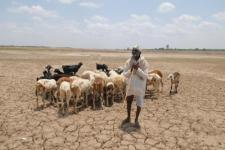 During drought even drinking water can become scarce in Maharashtra (Image: Hemant Mishra/Mint)