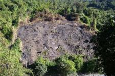 "Land cleared for ""jhoom"", a traditional shifting cultivation in Northeast India (Image: Prashanthns)"