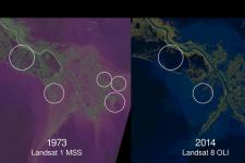 Parts of land lost to the sea along the last four decades (Image: Zachary Tessler/USGS and NASA)