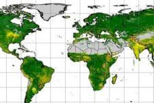 Screenshot of Global Soil Erosion (ESDAC)