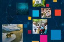 Cover of the Compendium of EO contributions to the SDG Targets and Indicators . Image: ESA