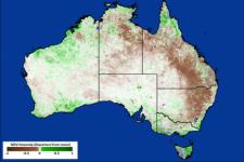 Producto NDVI de 8 días basado en MODIS para Australia del 1 al 9 de enero de 2014