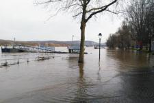 The rising waters of the Rhine river in Bonn. Image: UN-SPIDER.
