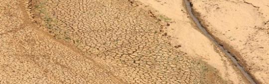 Drought in Sri Lanka in 2012.
